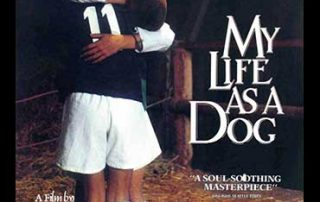 MY LIFE AS A DOG movie poster